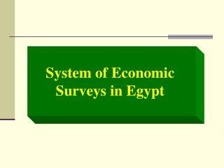 System of Economic Surveys in Egypt