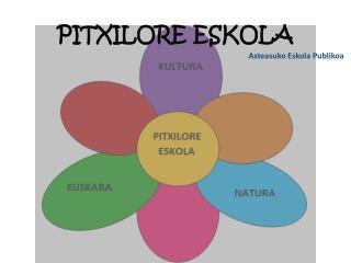 PITXILORE ESKOLA