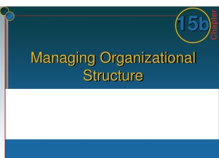 13.1 Organisational Structure