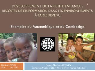 Exemples du Mozambique et du Cambodge