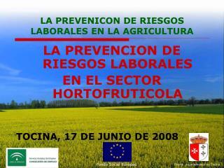 LA PREVENICON DE RIESGOS LABORALES EN LA AGRICULTURA