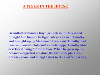 A TIGER IN THE HOUSE