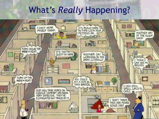 What's  Really  Happening?