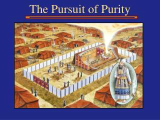 The Pursuit of Purity