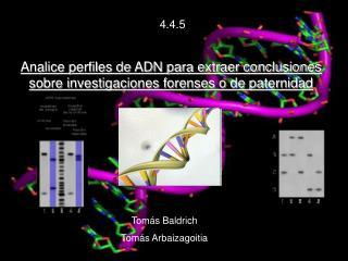 Analice perfiles de ADN para extraer conclusiones sobre investigaciones forenses o de paternidad