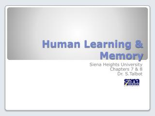 Human Learning & Memory