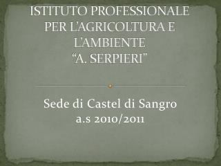 """ISTITUTO PROFESSIONALE PER L'AGRICOLTURA E L'AMBIENTE  """"A. SERPIERI"""""""
