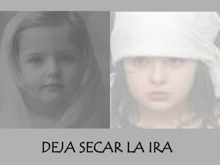 DEJA SECAR LA IRA