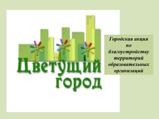 Городская акция по благоустройству территорий  образовательных организаций