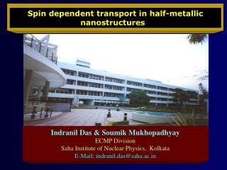 Spin dependent transport in half-metallic nanostructures