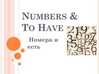 Numbers &  To Have