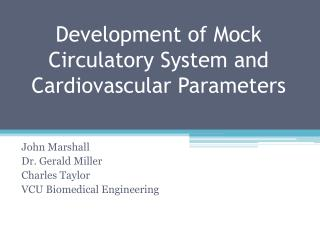 Development of Mock  Circulatory System and Cardiovascular  Parameters