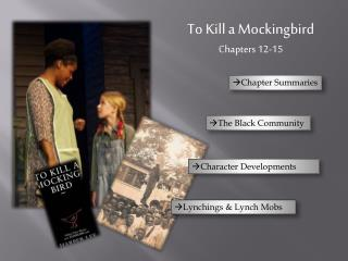 To Kill a Mockingbird Chapters 12-15