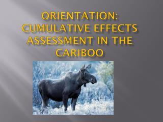 Orientation: Cumulative Effects Assessment in the Cariboo