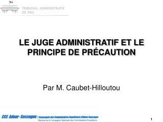 LE JUGE ADMINISTRATIF ET LE PRINCIPE DE PRÉCAUTION