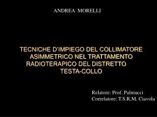 Relatore: Prof. Palmucci Correlatore: T.S.R.M. Ciavola