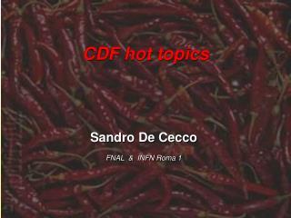 CDF hot topics