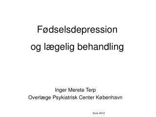 Inger Merete Terp Overlæge Psykiatrisk Center København Sorø 2012