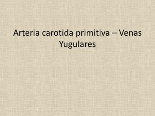 Arteria carotida primitiva  –  Venas Yugulares