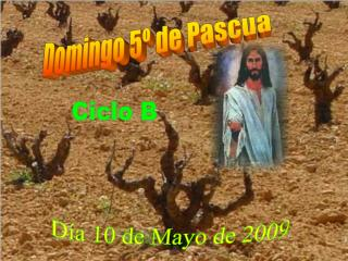 Domingo 5º de Pascua