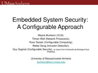 Embedded System Security: A Configurable Approach