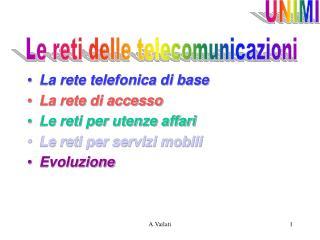 La rete telefonica di base La rete di accesso Le reti per utenze affari Le reti per servizi mobili