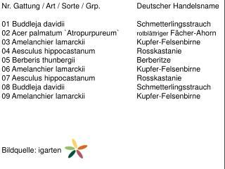 Nr. Gattung / Art / Sorte /  Grp .  Deutscher Handelsname