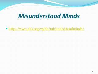 Misunderstood Minds
