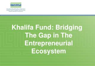 Khalifa  Fund: Bridging The Gap in The Entrepreneurial Ecosystem
