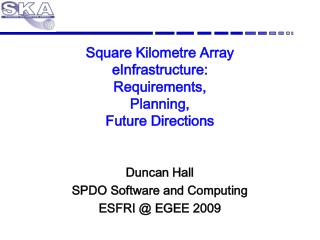 Square Kilometre Array eInfrastructure : Requirements, Planning, Future Directions