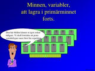 Minnen, variabler, att lagra i primärminnet forts.