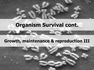 Organism Survival cont.