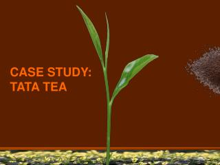 CASE STUDY: TATA TEA