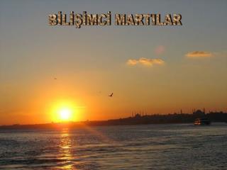 BİLİŞİMCİ MARTILAR