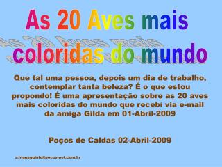 As 20 Aves mais  coloridas do mundo