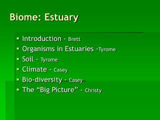 Biome: Estuary