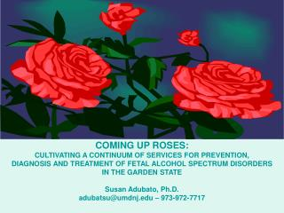 COMING UP ROSES:  CULTIVATING A CONTINUUM OF SERVICES FOR PREVENTION,  DIAGNOSIS AND TREATMENT OF FETAL ALCOHOL SPECTRUM