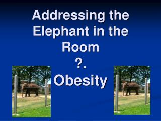 Addressing the Elephant in the Room ?. Obesity