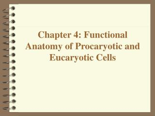 Chapter 4: Functional Anatomy of Procaryotic and Eucaryotic Cells