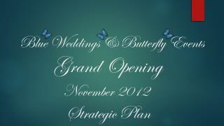 Blue Weddings & Butterfly Events Grand Opening November 2012                  Strategic Plan