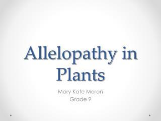 Allelopathy in Plants