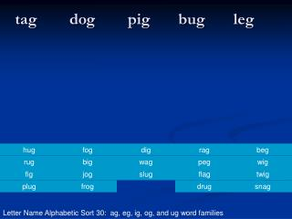 tag        dog        pig       bug       leg