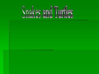 Snakes and Turtles