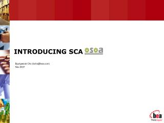 INTRODUCING SCA