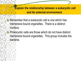 Explain the relationship between a eukaryotic cell and its external environment.