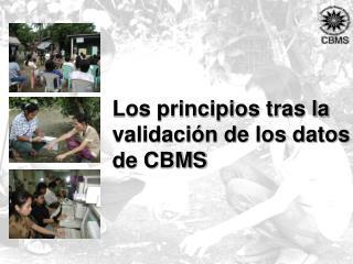 Los principios tras la validación de los datos de CBMS