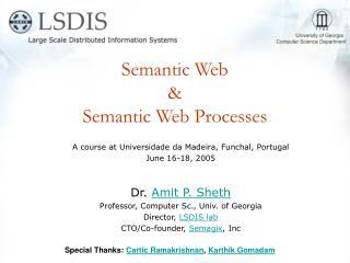 Semantic Web  &  Semantic Web Processes
