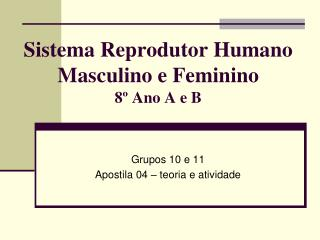 Sistema Reprodutor Humano Masculino e Feminino 8� Ano A e B