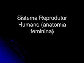 Sistema Reprodutor Humano (anatomia feminina)