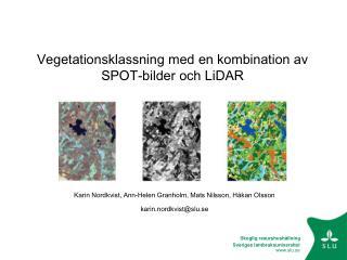 Vegetationsklassning med en kombination av SPOT-bilder och LiDAR